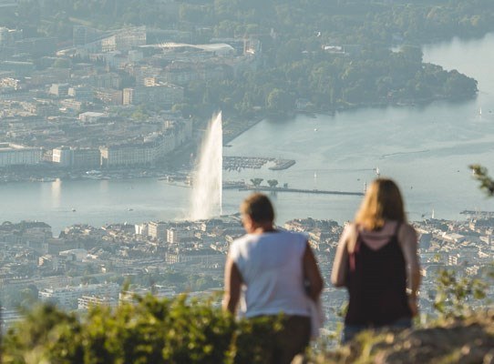 Geneva City Pass 72h saleve